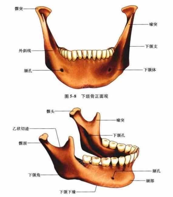 下颌角截骨、颧骨内推有什么后遗症?