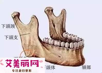下颌骨一边大一边小该如何矫正?